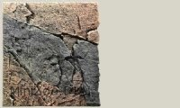 Back to Nature Slim-Line 60 A Basalt/granit (50x55 cm)