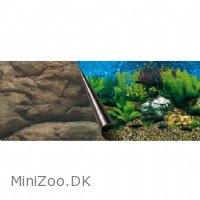 Europet Baggrund sea and rock 50x120 cm