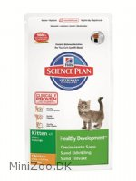 Feline Kitten Healthy Development Chicken 2 kg