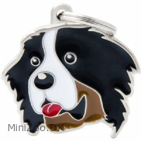 Hundetegn My family Friends Berner Sennenhund