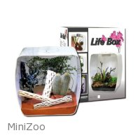 Lucky Reptile Life Box 30 White