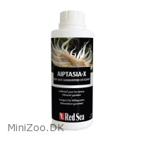 Red Sea Aiptasia-x (glasrose dræber) 500 ml
