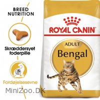 Royal Canin Bengal 10 kg Adult