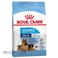 Royal Canin Maxi Starter Mother and babydog 15 kg