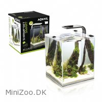 Shrimpset Smart 10 L 20x20x25cm Sort