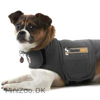 Thundershirt XL