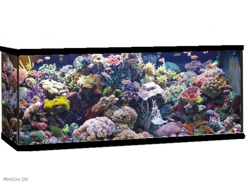 mark ii aquarium 360 l black marine k b nu kun dkk. Black Bedroom Furniture Sets. Home Design Ideas