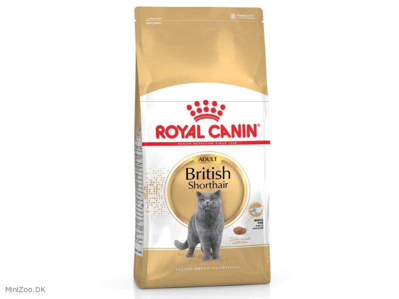 royal canin british shorthair 34 4 kg k b nu kun 369 00 dkk. Black Bedroom Furniture Sets. Home Design Ideas