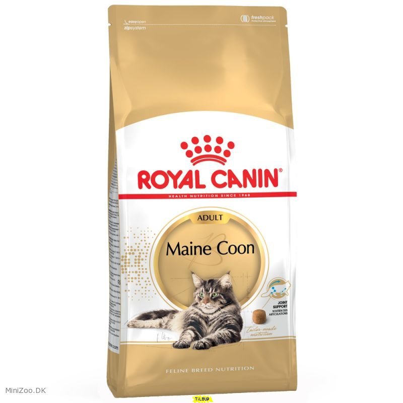 royal canin maine coon 31 10 kg 4 p lager k b nu kun 598 00 dkk. Black Bedroom Furniture Sets. Home Design Ideas